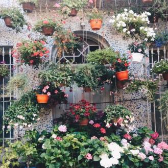 Flower Shop in Büyükada